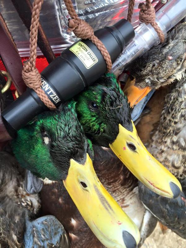Duck Season Winding Down