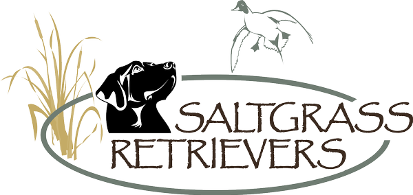 Saltgrass Retrievers