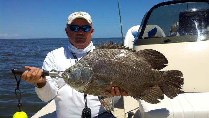 Pipkin ranch outfitters inshore fishing photo 20 for Gulf shores inshore fishing