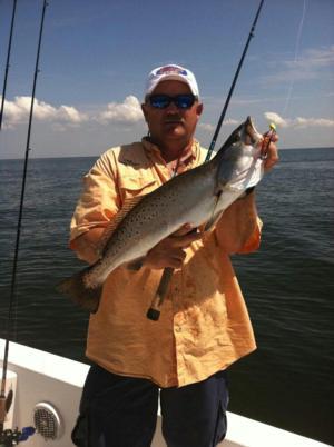 Gulf coast fishing for Gulf coast fish